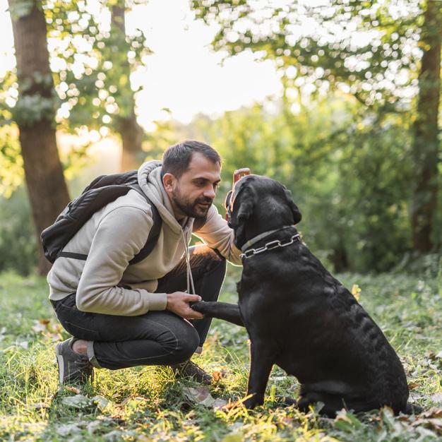 mezczyzn uczy sie dominacji nad psem